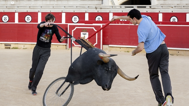 Spanish Bullfighting Teacher Arrested For Child Sexual Offences on Spain's Costa Blanca