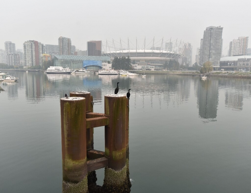 Vancouver effected by Californian fires as smoke lingers in the skies and streets
