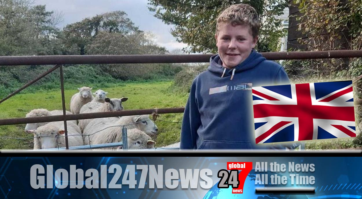 Farming business started by 13-year-old boy to rear his own sheep