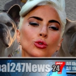 Lady Gaga pays $500000 to get her Frenchie's back