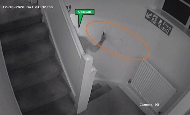 WATCH: Murdering Yeovil Knifeman Matthew Sheridan Filmed Himself After Brutal Attack